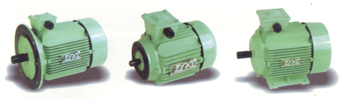 Standard Motors and DC Motors